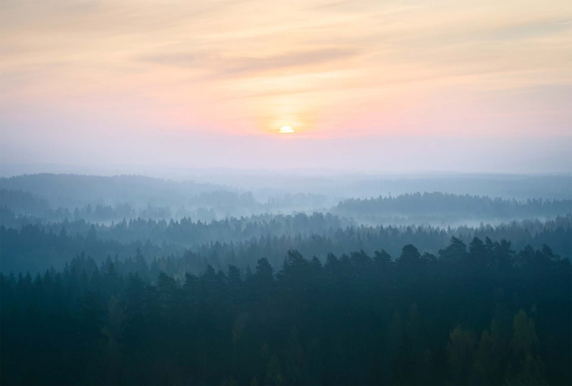 Naava brand photography of a misty sunset in northern Finland